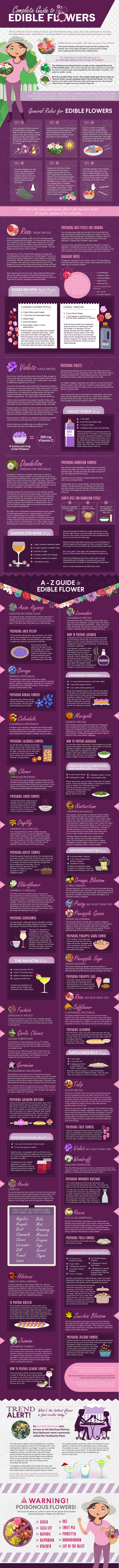 A To Z Guide To Edible Flowers