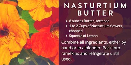 Nasturtium Butter Recipe