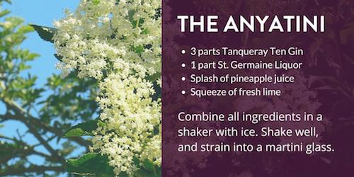 The Anyatini Recipe