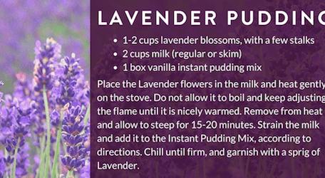 Lavender Pudding Recipe
