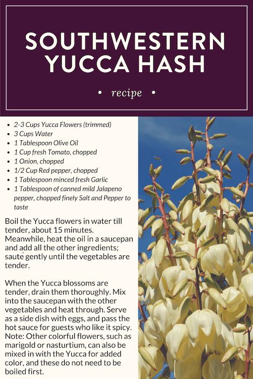Southwestern Yucca Hash Recipe