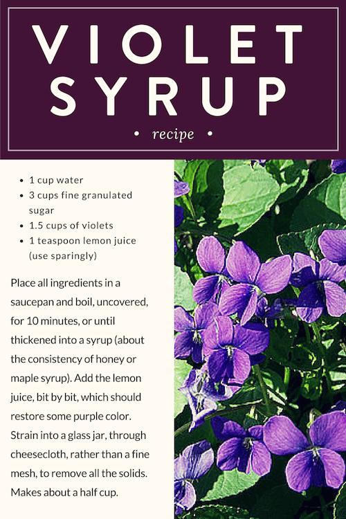 Violet Syrup Recipe