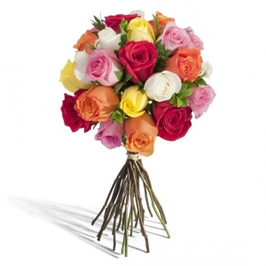 two-dozen-assorted-roses-550x550-86