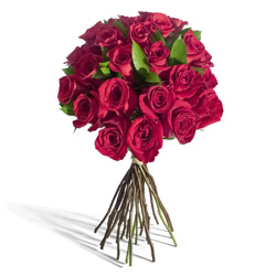 two-dozen-red-roses-250x250-87