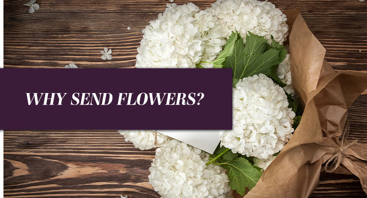 dating flowers