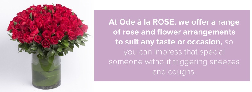 ode a la rose allergy free bouquets