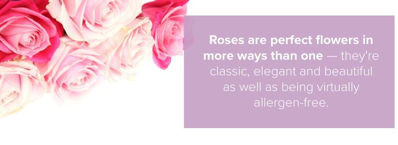 allergen free roses