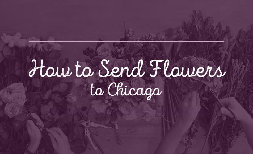 send flowers to chicago