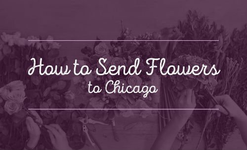 how to send flowers to chicago