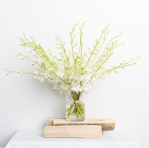 a4ee5eeebd1b8 Best and Worst Flowers for Allergy Sufferers | Complete Guide