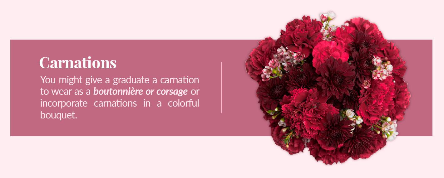 graduation carnations