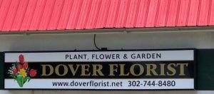 Plant, flower and Garden Shop