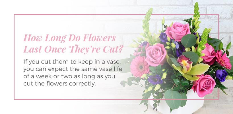 how long do flowers last if cut
