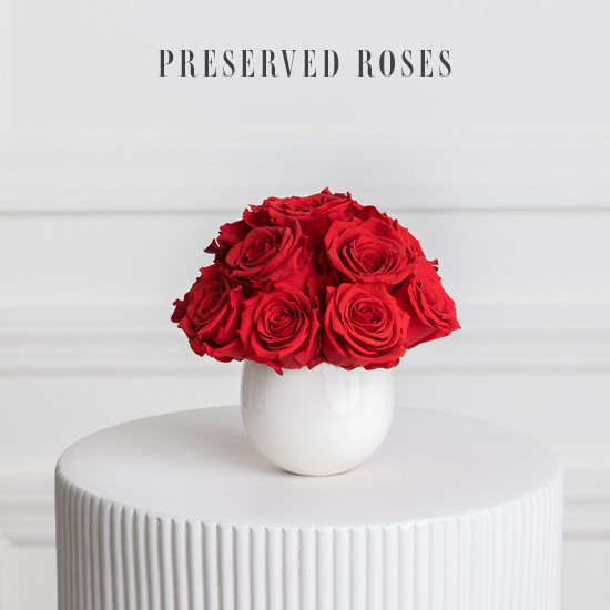 Small Red Preserved Roses in White Vase